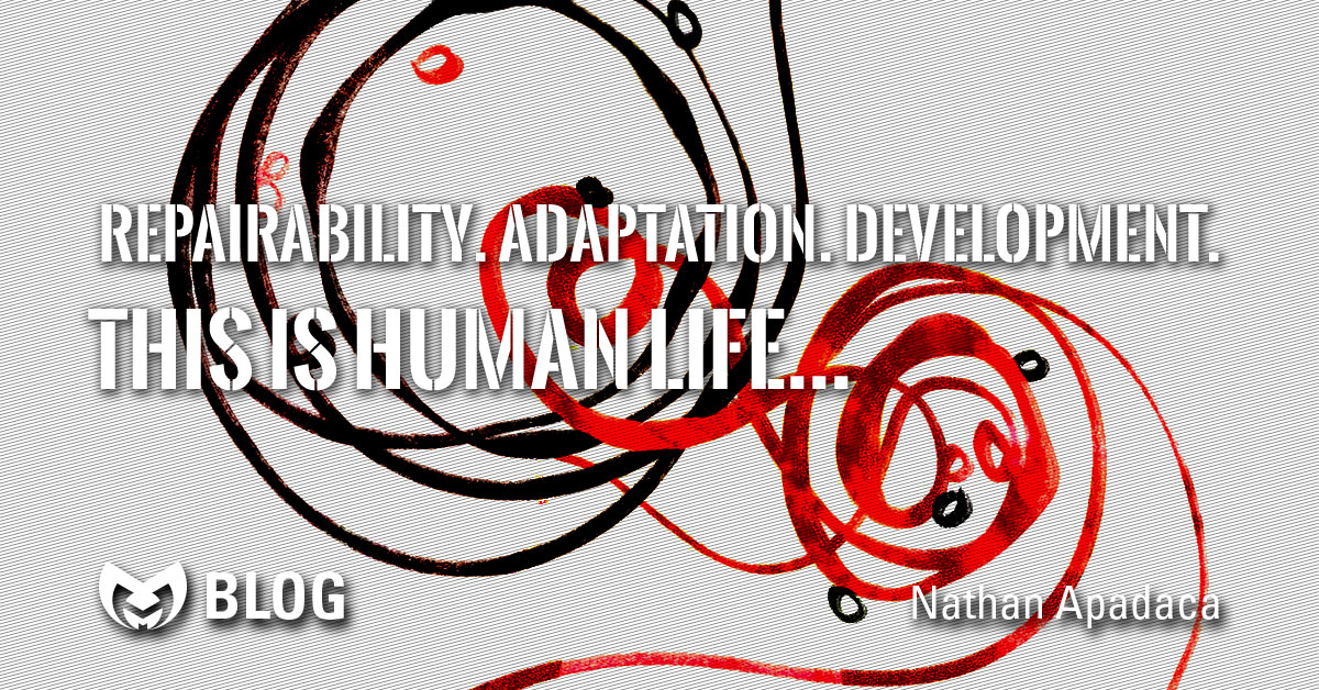 "Book cover for ""Untangling Twinning"" with text saying ""Repairability. Adaptation. Development. This is Human Life"""